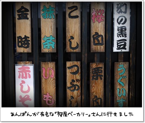 08デビュー戦.jpg