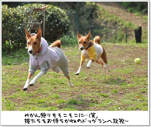 21デビュー戦.jpg